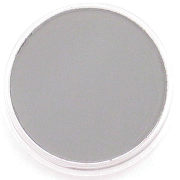 Panpastel 28205 Model & Miniature Color: 9ml pan (D) Neutral Grey