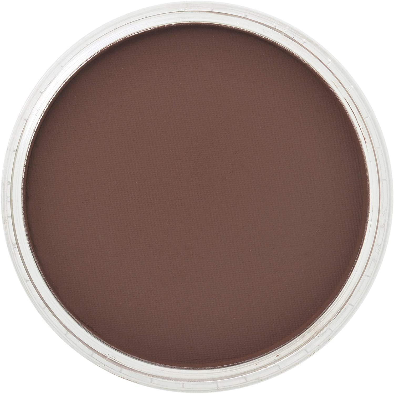 Panpastel 23801 Model & Miniature Color: Red Iron Oxide Extra Dark 9ml pan