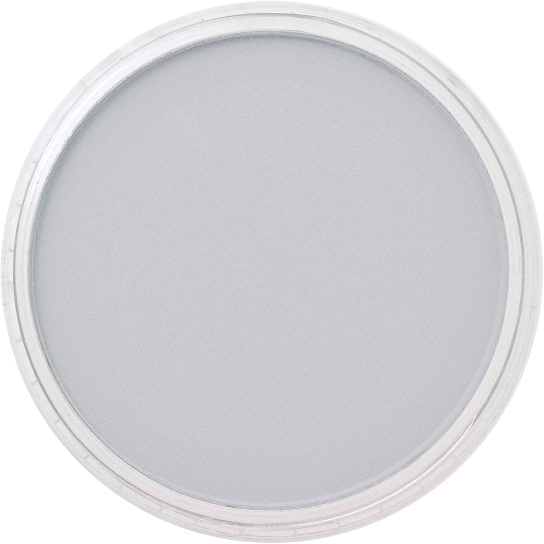 Panpastel 28407 Model & Miniature Color: 9ml pan (D) Paynes Grey Tint