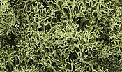 Woodland Scenics 163 Lichen Medium Green