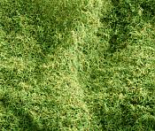 Heki Scenery 3361 Static Grass - Forest Floor  2mm - 3mm long - 100g