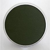Panpastel 26601 Model & Miniature Color: 9ml pan (D) Chromium Green Extra Dark