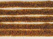 Peco PSG-37 - High Self Adhesive Wild Meadow Grass Tuft Strips - 6mm (10 strips)