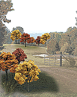 Woodland Scenics 1576 Ready Made Realistic Trees Value Pack - Deciduous Fall Colors