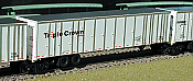 Deluxe Innovations 180210 N Scale Roadrailer 10 Pack Set #2 -Triple Crown