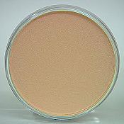 Panpastel 27408 Model & Miniature Color: 9ml pan (D) Burnt Sienna Tint