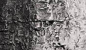 Woodland Scenics 1220 Earth Colors Liquid Pigment - 4 Ounce Bottle-Black